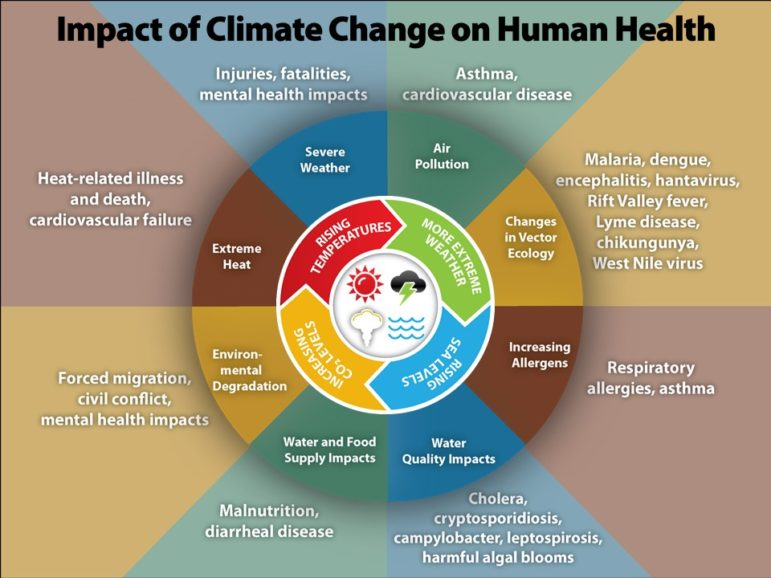 Patient And Planetary Health Its Time For Ct Medical Professionals To Start Talking About Climate Change The Ct Mirror